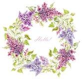 Grinalda floral lilás da aquarela ilustração stock