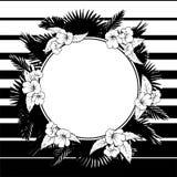 Grinalda floral tropica Quadro preto e branco Imagem de Stock Royalty Free
