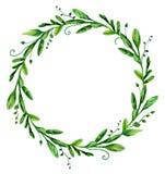 Grinalda greenary da aquarela Foto de Stock