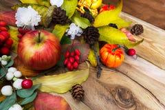 Grinalda rústica da ação de graças com abóbora, maçã, bagas e whit Imagens de Stock Royalty Free