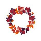 Grinalda redonda da ilustração do vetor com folhas de outono Foto de Stock Royalty Free
