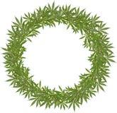 A grinalda redonda do verde sae do cannabis Fotografia de Stock Royalty Free