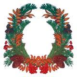 A grinalda tirada mão com bagas e abeto vermelhos ramifica Quadro redondo para o projeto do inverno dos cartões de Natal Copyspac Fotografia de Stock Royalty Free