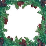 Grinalda tirada mão com ramos e cones de árvore do abeto Quadro quadrado para o projeto do inverno dos cartões de Natal Foto de Stock Royalty Free
