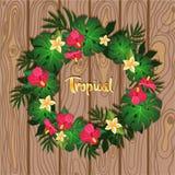 Grinalda tropical das plantas na imagem de madeira do vetor do fundo ilustração royalty free