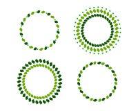 Grinaldas do verde Fotos de Stock