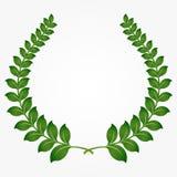 Grinaldas verdes do louro Imagem de Stock Royalty Free