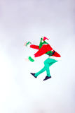 Grinch stole Christmas Stock Photography