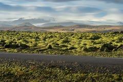 Grindavik-Lavafeld bei Island, das durch grünes Moos mit Asphaltstraßevordergrund und Schneegebirgshintergrund bedecken Lizenzfreie Stockfotografie