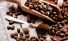grinded的咖啡 匙子地面coffe 免版税库存图片