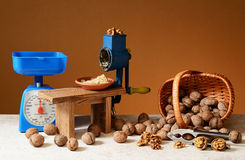 Grinded walnuts and household objects Royalty Free Stock Photography