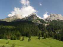 Grindelwal Wilderness Scene Royalty Free Stock Images