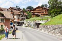 grindelwald瑞士 少女峰,全景 免版税库存照片
