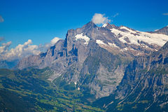 Grindelwald Fotografie Stock Libere da Diritti