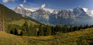 Grindelwald in Bern canton Switzerland. This is a hiking trail near Grindelwald in the Canton of Bern in Switzerland. Panoramic view of snowy mountains in the stock images