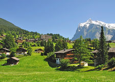 Grindelwald, Bernese Oberland, Zwitserland Stock Afbeeldingen