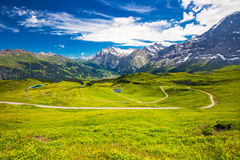 Grindelwald da Mannlichen in alpi svizzere Immagini Stock