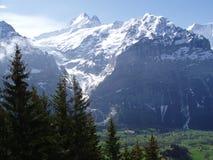 Grindelwald die Schweiz Stockbild