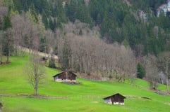 Grindelwald-Dorf in der Schweiz Lizenzfreies Stockbild