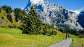 Grindelwald-Dorf, die Schweiz Stockfotografie