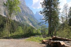 Grindelwald with Eiger, trees and wood Royalty Free Stock Photos