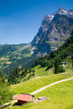 Grindelwald nel cantone Svizzera di Berna Fotografia Stock