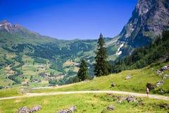 grindelwald niedaleko Szwajcarii wędrownej Fotografia Stock