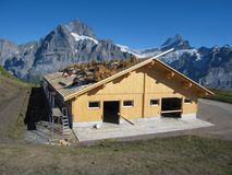 GRINDELWALD, SUISSE - 31 AOÛT 2009 : travailleurs de la construction établissant la structure de toit de maison au chantier de co Images libres de droits
