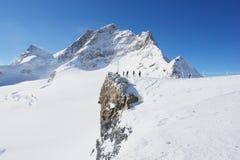 Grindelwald, Svizzera Immagini Stock Libere da Diritti