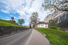 grindelwald switzerland Royaltyfri Foto