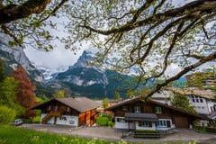 grindelwald switzerland Arkivfoto