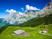 Grindelwald, Switzerland Royalty Free Stock Image