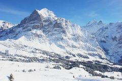 Grindelwald, Switzerland Royalty Free Stock Photo