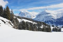 Grindelwald, Switzerland Stock Image