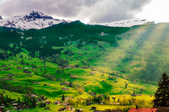 Grindelwald valley with village scattered on the  green slopes of Bernese Alps. Switzerland. Royalty Free Stock Images
