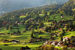 Grindelwald Village in Berner Oberland Royalty Free Stock Image