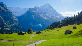 Grindelwald village , Switzerland. Grindelwald village view with the Mountain, Switzerland Royalty Free Stock Images