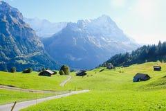 Grindelwald village , Switzerland. Grindelwald village view with the Mountain, Switzerland Stock Photos
