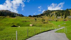 Grindelwald village , Switzerland. Grindelwald village view with the Mountain, Switzerland Stock Images