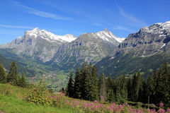 Grindelwald with Wetterhorn, Schreckhorn and Eiger Royalty Free Stock Photos