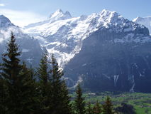 Grindelwald Zwitserland stock afbeelding