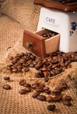 Grinder with coffee beans Royalty Free Stock Photos