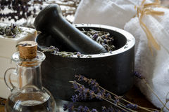 Grinding and crushing of dried lavender with a mortar. Grinding and crushing of dried lavender with a stone mortar Stock Photo