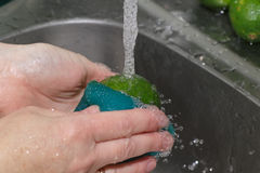 Grinding lime. Royalty Free Stock Image