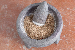 Grinding wheat Royalty Free Stock Photo
