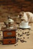 gringer kawę Obrazy Royalty Free