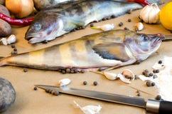 Grinling fisk med grönsaker Arkivfoto