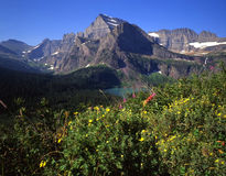 Grinnell Lake, Mt. Gould & Flowers. Grinnell Lake,Mt. Gould and flowers in Glacier National Park, located in Montana, part of Waterton-Glacier International royalty free stock image