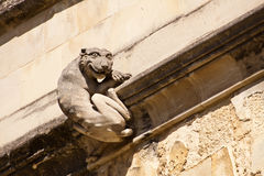 Grinning Cat. An architectural detail of a stone carving of a grinning cat attached to the wall of a cathedral royalty free stock photo