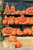 Grinning Jack-O-Lanterns and various pumpkins on green shelving Stock Photography